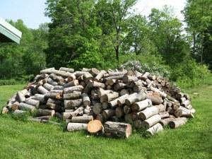 unsplit firewood